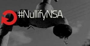 nullify nsa